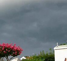 Severe Storm Warning 14 by dge357