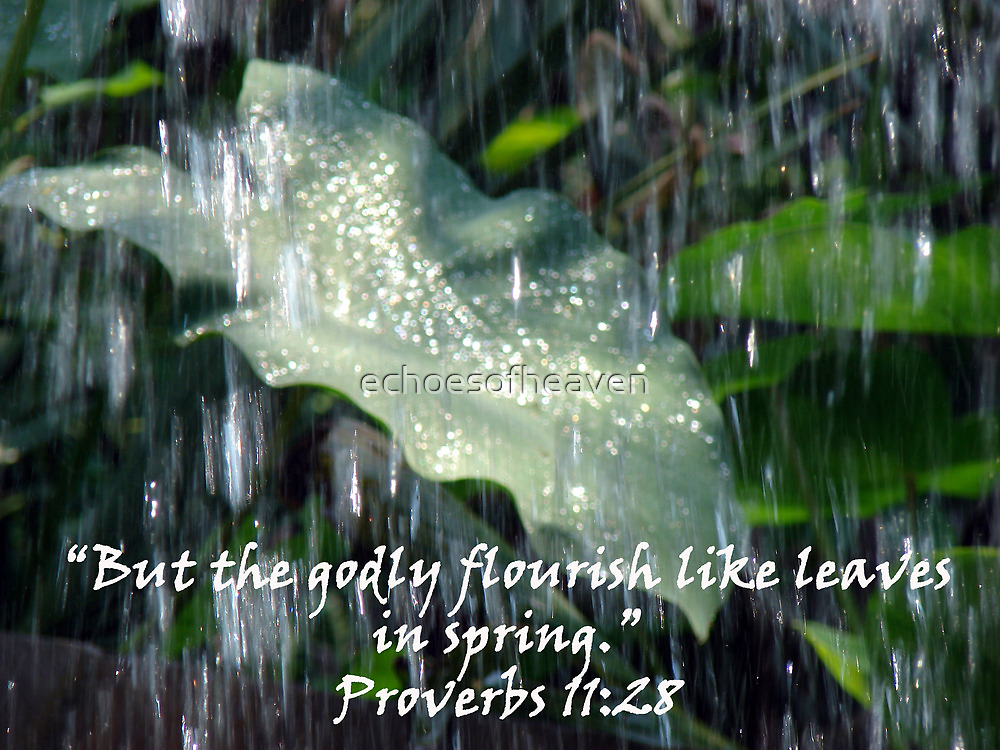 """""""Proverbs 11:28""""  by Carter L. Shepard by echoesofheaven"""