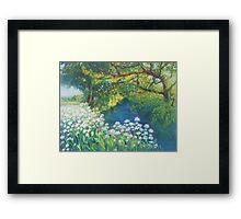 River Cerne, Dorset Framed Print