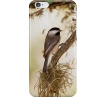 Carolina Chickadee-Oil Painting iPhone Case/Skin