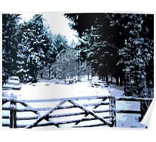 Gate in the Snow Poster