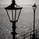 Lamp Post by rhiannon85