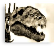 My, What Big Teeth You Have! Canvas Print