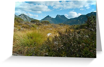 Cradle Mountain view by Jennie  Stock