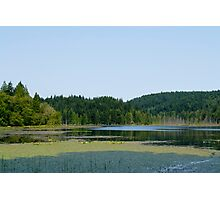 Island Lake Photographic Print