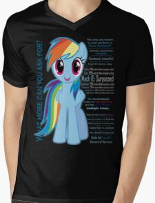 What else could anyone possibly ask for? (Rainbow Dash) Mens V-Neck T-Shirt
