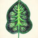 Tropical Leaf II by James McKenzie