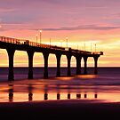 New Brighton Pier at Dawn by Liz Davidson