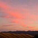 Autumn Dawn, Wither Hills by Liz Davidson