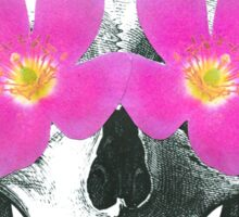 Flowering skull  Sticker