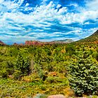 SEDONA FOREST. by HanselASolera