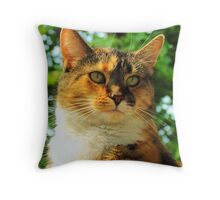 August Warmth~ Throw Pillow