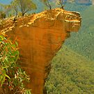 Hanging Rock .. the long view by Michael Matthews