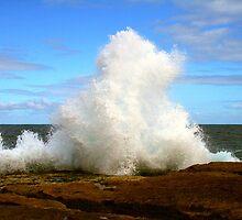 Splash ... !! by Michael Matthews