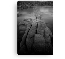 Alone On A Rock Canvas Print