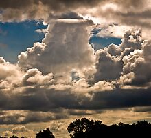 Cumulus Clouds4 by Peterwlsn