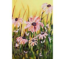 My wonderful Crazy daisies, watercolor Photographic Print