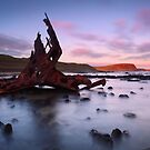 Speke Sunset - Phillip Island by Mark Shean