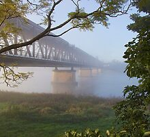 Morning Gold: Grafton Bridge by SunshineKaren