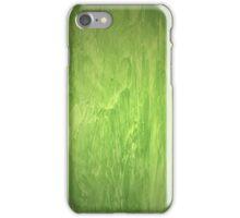 Venetian marble plaster green iPhone Case/Skin
