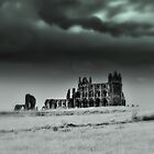Whitby Abbey by seanwareing