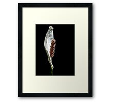 Black With A Hint Of Botanical Element ~ Part Seven Framed Print
