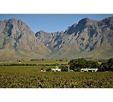 Western Cape farmlands Photographic Print