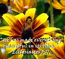 """Ecclesiastes 3:11""  by Carter L. Shepard by echoesofheaven"