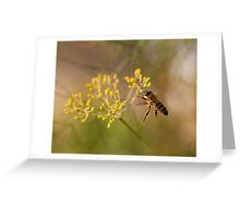 Honey bee and fennel Greeting Card