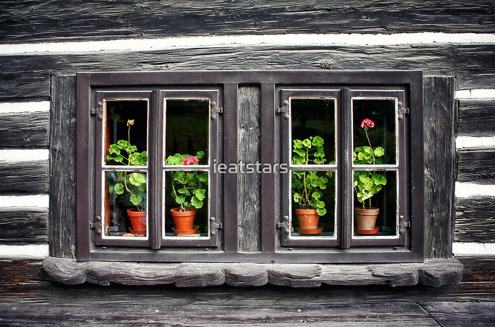 Old Czech home with flowers in windows by ieatstars