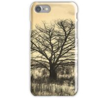 stark silhouette iPhone Case/Skin