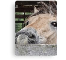 I'm having a bad hair day Canvas Print