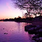 Sunset over Northlake by Christine Chase Cooper