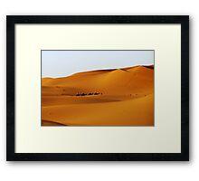 Camels in the desert Framed Print