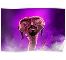 Euphoria: Snoop Poster