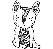 Doodle french bulldog Photographic Print