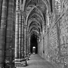 Cloister in Mono by Colin Metcalf