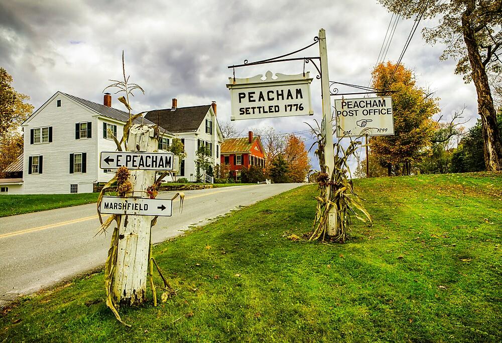 Peacham No. 1 by Harry H Hicklin