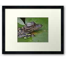 I Love Lily Framed Print