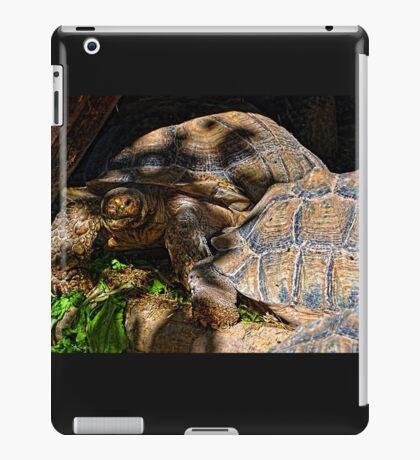 Giant Tortoise........... iPad Case/Skin