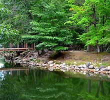 Serene River Park by Debbie  Maglothin