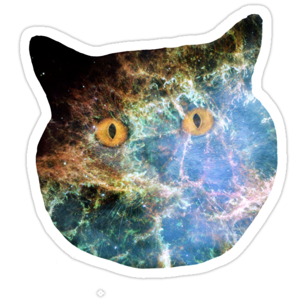 Return of the Kitty! by crashin