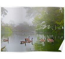 Stow Lake Wild Geese Poster