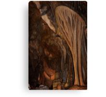 Parachute Shield – Lehman Caves Canvas Print