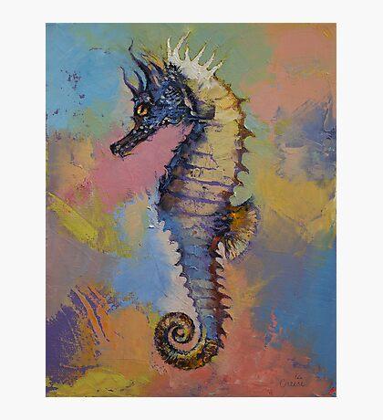 Seahorse Photographic Print