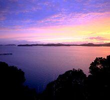 Waiheke Island Sunset by kmatm