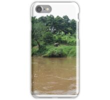 Elephant on River Bank iPhone Case/Skin