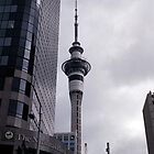 Sky Tower, Auckland by Callum Denholm