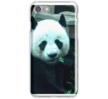Panda Eating Bamboo iPhone Case/Skin