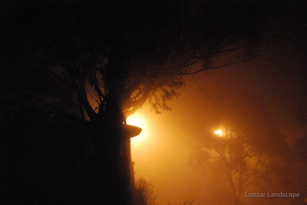 Foggy Evening by Lozzar Landscape